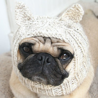 Undercover Cat Hat (by jessicalynneart on Etsy)