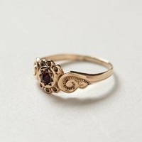 Antique Cinnamon Sunset Midi Ring by shopFiligree Gold One Size Jewelry