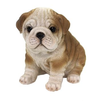 Animal BULLDOG PUPPY Polyresin Mans Best Friend Dog 12642