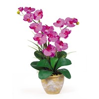 Double Stem Phalaenopsis Silk Flower Arrangement