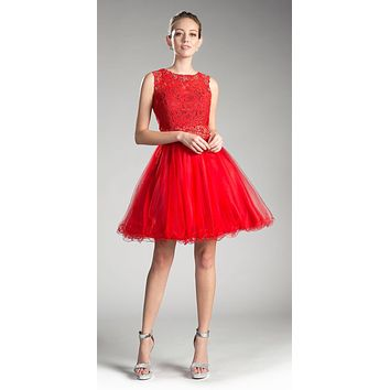 Red Lace Beaded Short Homecoming Dress Sleeveless