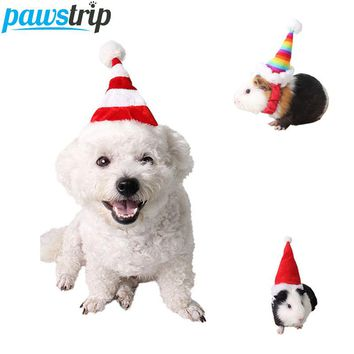 Pawstrip  Christmas Hat   Costume