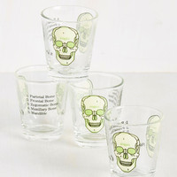 You Get the Biologist Shot Glass Set