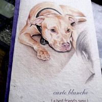 carte blanche ( a best friend's song ) pit bull dog love