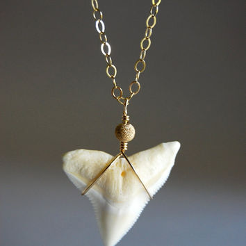 Mano Sr. necklace - long 14kt gold filled shark tooth necklace, large gold shark tooth necklace, modern layering necklace, maui, hawaii