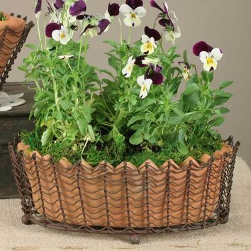 Oval Wire Basket with Terra Cotta Pot - Green/Rust