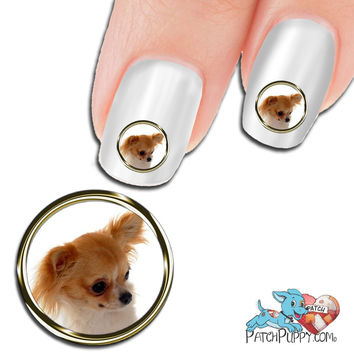 Chihuahua Portrait Nail Art (Now 50% more FREE)