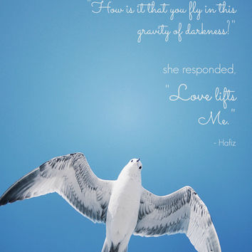 Inspirational Quote Photography - Hafiz Quote, Seagull Photograph - Blue Sky, White Bird - Love Lifts Me