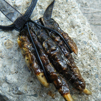 Creepy Crawly Real Alligator Foot Necklace. Voo Doo Gator Jewelry