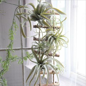 2018 new arrival  artificial air plant Tillandsia artificial  plant succulent   Pineapple leaf
