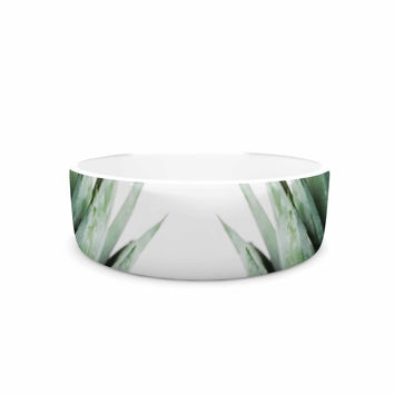 "Chelsea Victoria ""Two Pineapples"" Green Gold Pet Bowl"