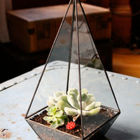 Obelisk Terrarium //made with recycled glass//