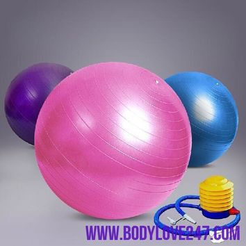 65cm Gym Ball Fitness Pilates Aerobics Yoga Ball Slimming Exercise Ball with Free Pump