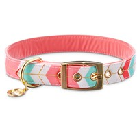 Bond & Co. Gold Chevron Collar | Petco Store