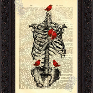 Anatomical Print - Rib Cage with Red Bird Heart Print on vintage 1890's upcycled Dutch English Dictionary Page