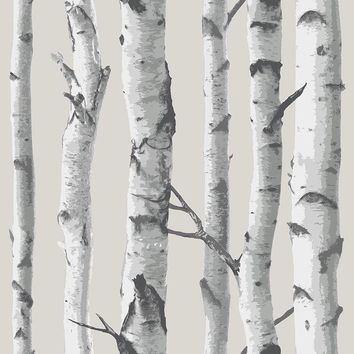 Brewster Wallpaper NUW1650 Birch Tree Peel And Stick