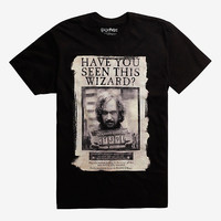 Harry Potter Have You Seen This Wizard T-Shirt