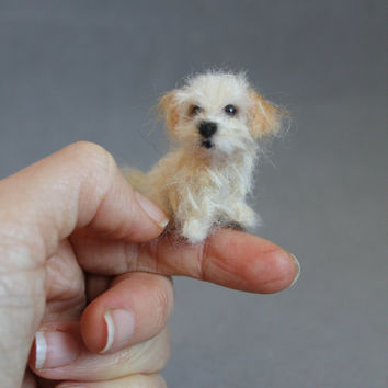 Custom order- Needle Felted miniature Dog 1:12 -Wool animal sculpture-Collectible artist animals- Havanese Maltese- doll house 1 inch.