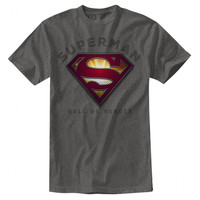 Superman Hall Of Heroes Gray Fit Mens T-Shirt