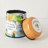 Just Picked Candle Tin by Illume