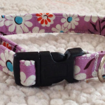 Purple Dog Collar with White Daisy Floral Design for Girl Dog- 10% Off Sale