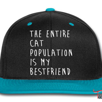 The Entire Cat Population Is My Bestfriend Snapback