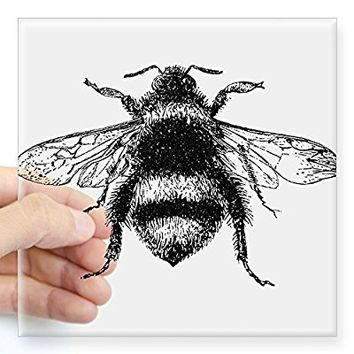 "CafePress - Vintage Honey Bee Sticker - Square Bumper Sticker Car Decal, 3""x3"" (Small) or 5""x5"" (Large)"