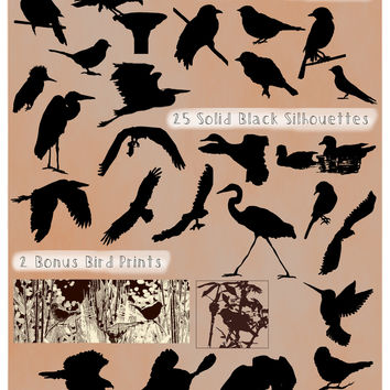 Bird Silhouette PNG Pack - All Clear Backgrounds - Hi-Res Bird Clip Art