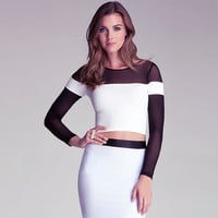 Mesh Cutout Long-Sleeve Bodycon Dress With Zipper Back