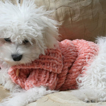 Soft Plush Dog Sweater Handmade Dog Clothes Chenille  Pet Clothing Hand Knit Pastel Color Dog Clothes Button Dog Sweater by BubaDog