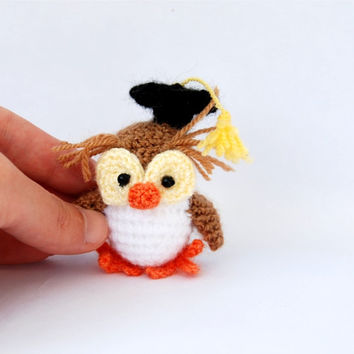 graduation owl, crochet miniature owl, amigurmi bird, school graduation gift, student owl, miniature owl, tiny owl, little owl, little bird