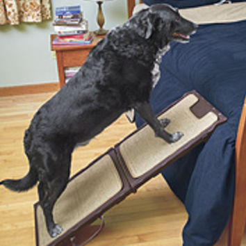 Older Dog Care | Free Shipping Available -- Orvis