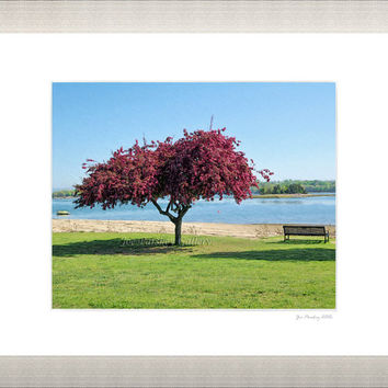 May, Hingham Harbor, Hingham, Massachusetts, 8x10 print in 11x14 mat, signed