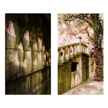 Original Fine Art Photograph SET - Bleak House, Pink Twisted Tree, Hearts, Graffitti, Duo, Two, Soft, Whimsy, Garden, Stairs, Gothic, Grunge
