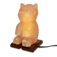 Himalayan Salt Teddy Bear Shaped Lamp