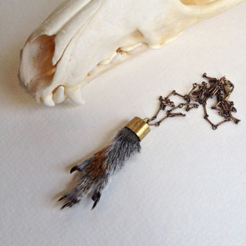 Preserved Squirrel Paw Pendant Necklace