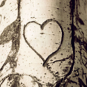 nature photography, tree Photography, Still life photography, Valentine art, Valentine gift, I love you print art, 5x7 (13x18cm)
