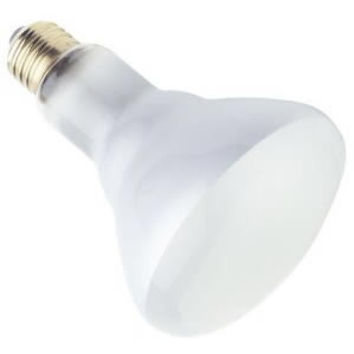 Satco Products S3259 120-Volt 50BR30 Frosted Flood Light Bulb