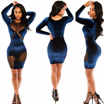 Black Mesh Embroidered Long Sleeve Mini Bodycon Dress