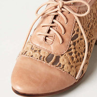 Anthropologie - Laceside Oxfords