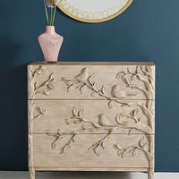 Orinthology Three-Drawer Dresser