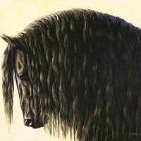 Horse Painting - Friesland Nobility Print By Crista Forest