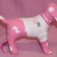 Victoria's Secret Pink Collectible 86 Dog With T-Shirt