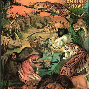 Ringling Bros Barnum & Bailey Wild Animals Poster