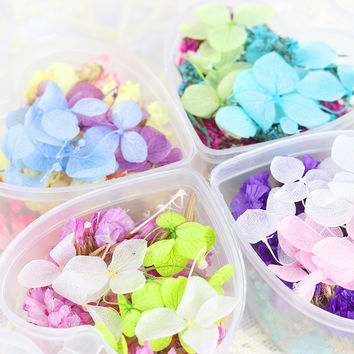 1 Box Mixed Dried Flowers Nail Art DIY Preserved Flower With Heart-Shaped Box Glass Bottle Decor Nail Decorations