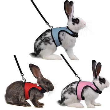 Hamster Rabbit Pet Harness
