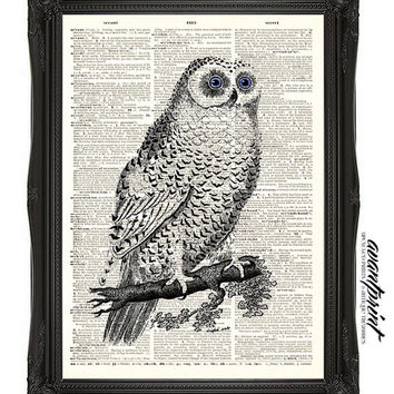 1800s Antique Sweet Snowy Owl Vintage Print on an Unframed Upcycled Bookpage
