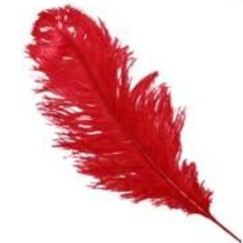 17-26in Red Ostrich Plumes/ Feathers