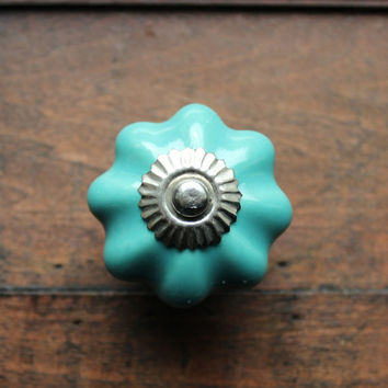 Decorative Drawer Knob / Cabinet Pull Ceramic Pumpkin in Cool Aqua (CK57)