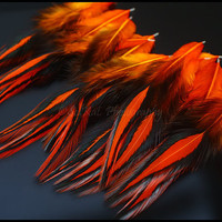 Orange Craft Feathers Jewelry Making Feather Supplies Rooster Saddle 15 Pieces Halloween Crafts Masks Burlesque Costume перья
